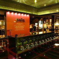 Galia-2007-2